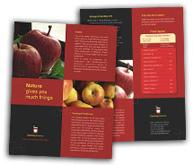 Online Brochure printing Canning  Food