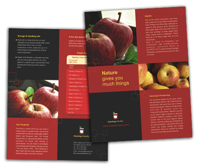 Online Single Page Brochures printing Canning  Food