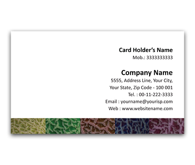 Online Flexi Business Card printing Melons