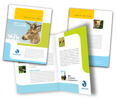 Online Brochures One Fold printing Wild Life Parks