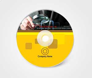 CD / DVD Stickers printing The Technology Company