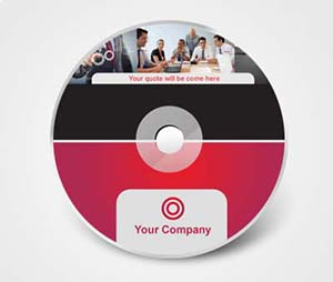 CD / DVD Stickers printing Consulting Firms