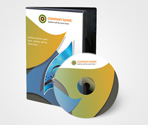 CD / DVD Covers printing It Consulting Services