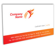 Online Business Card printing Cricket Academy