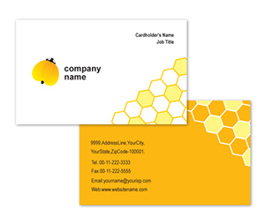 Business Card printing Electrical Shop